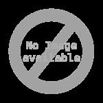 Handheld Algiz 16A Screen Protector